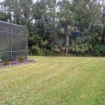 sideyard_500
